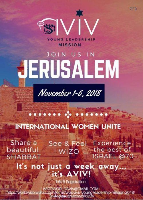 Aviv flyer